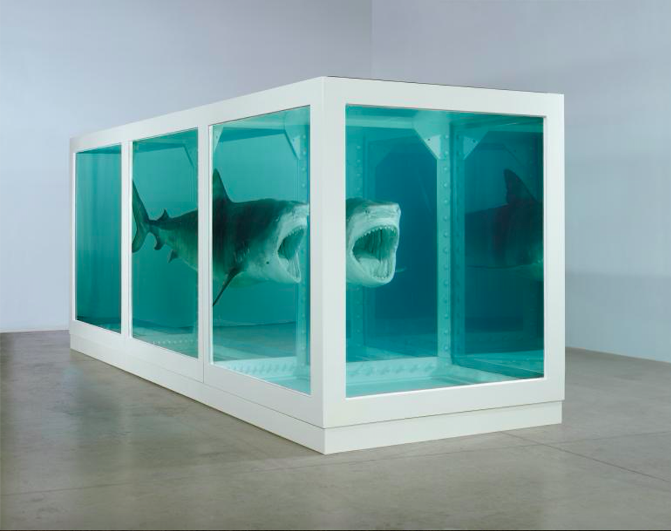 The Physical Impossibility of Death in the Mind of Someone Living, 1991.Photographed by Prudence Cuming Associates © Damien Hirst and Science Ltd. All rights reserved, DACS 2012. Image Source: Damien Hirst.