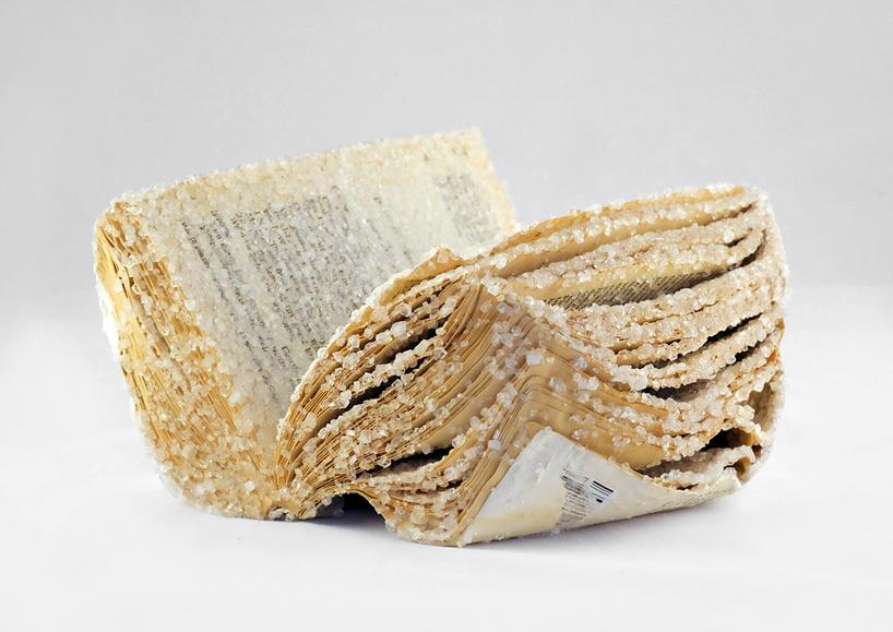 alexis-arnold-crystallized-books-designboom-25
