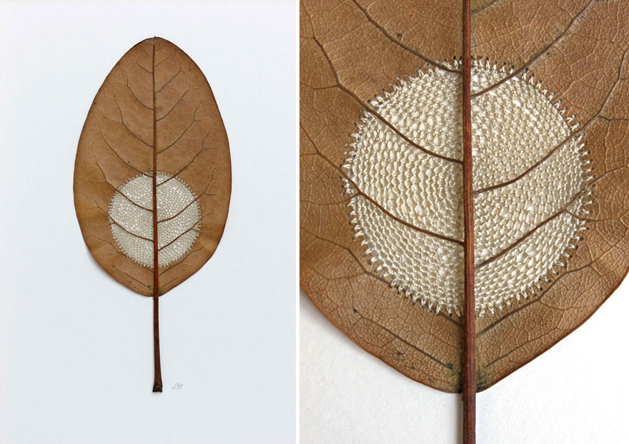 Susanna Bauer 的微型藝術:小巧細膩的葉片編織