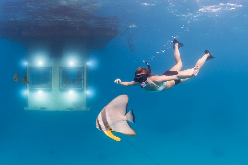 14600__870x_the-manta-resorts-underwater-room-13