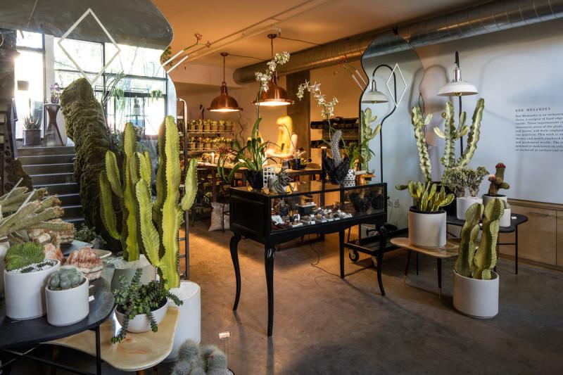 Persephones_Botanica-conceptual-pop-up-shop-LA-05-800x533