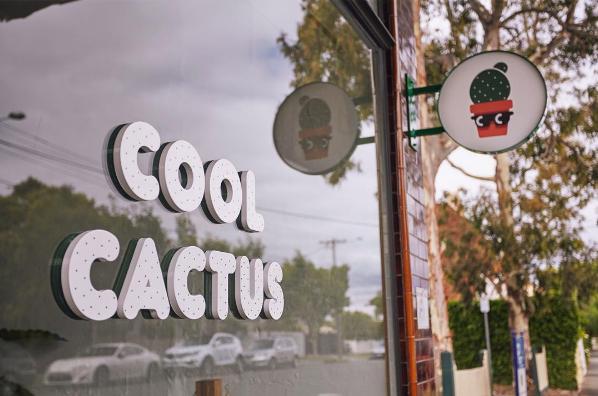 Cool Cactus_13