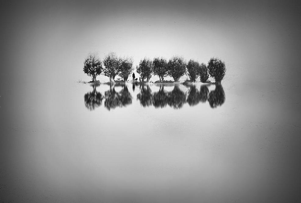 Iman Tehranian_11