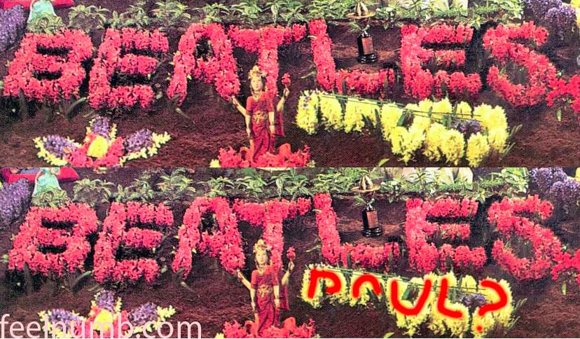 披頭四字樣下的黃色花叢被「保羅已死」派指為保羅的吉他形狀與「Paul?」字樣。